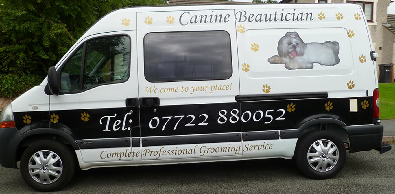 Miraculous Sassy Paws Dog Grooming North Wales Beutiful Home Inspiration Xortanetmahrainfo